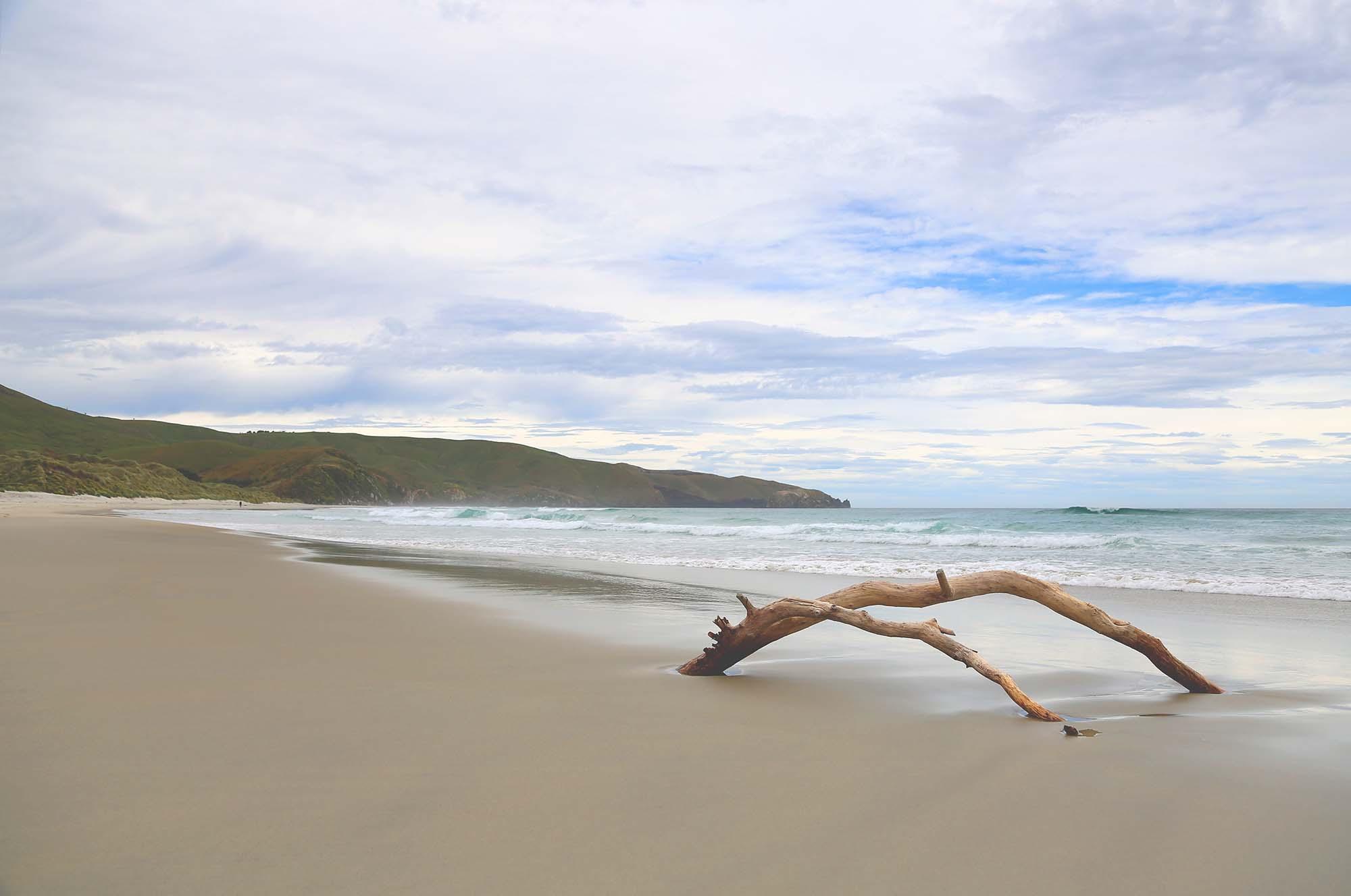 Matt-Landscape-NZ_0022_3Z6A9860