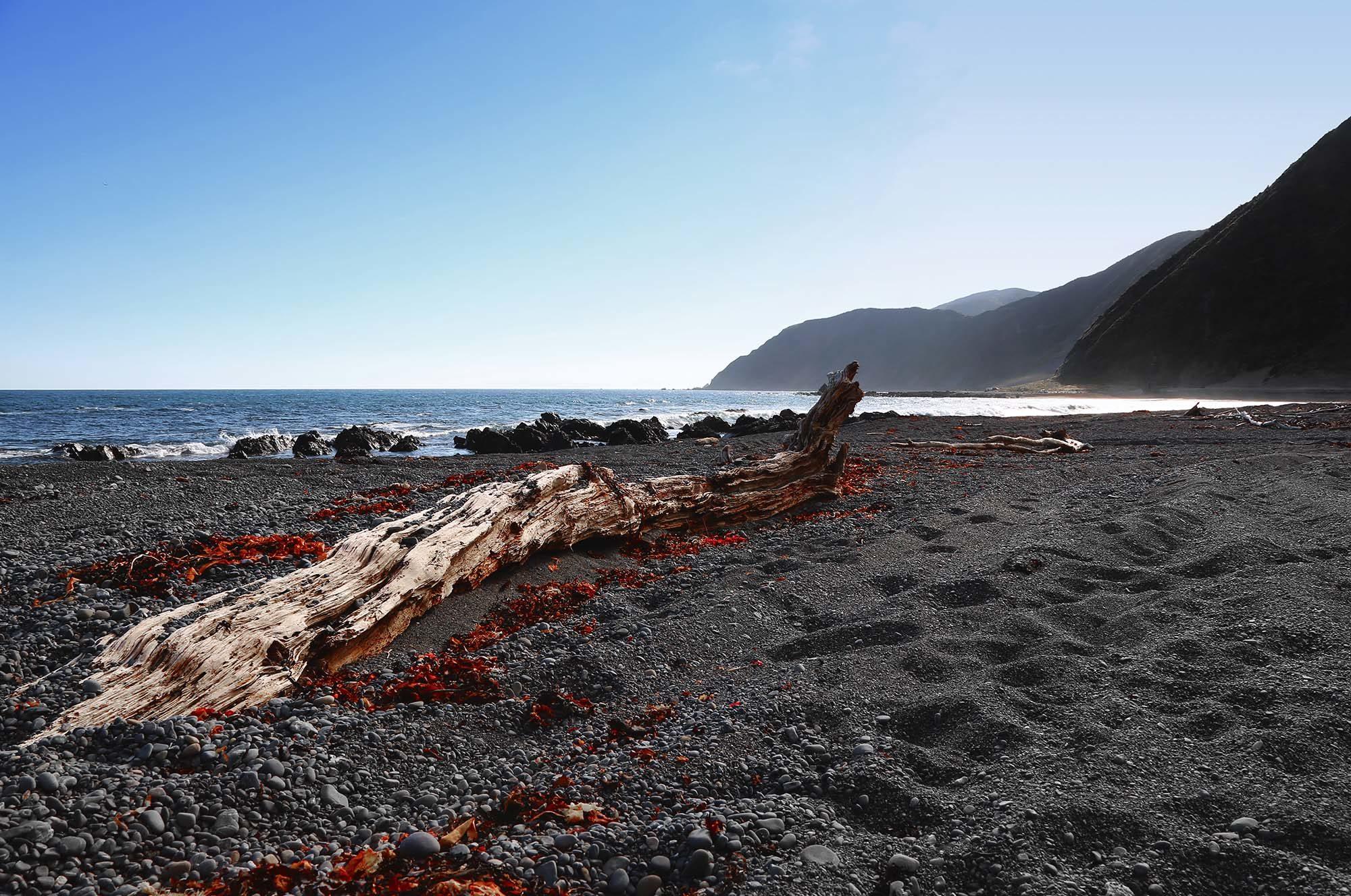 NZ_0002_3Z6A8695