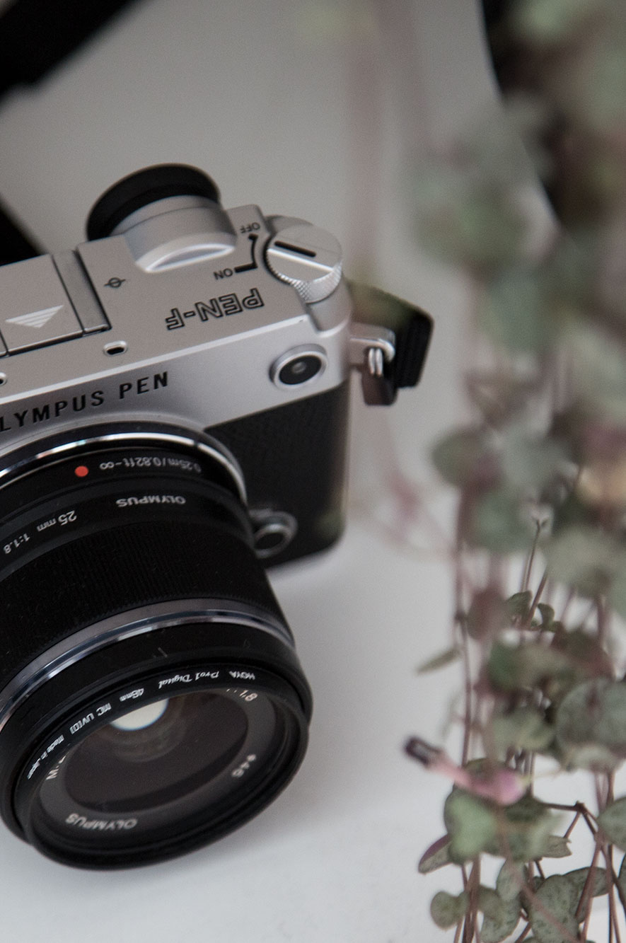 WeDesign Olympus Pen Camera with 35mm lens