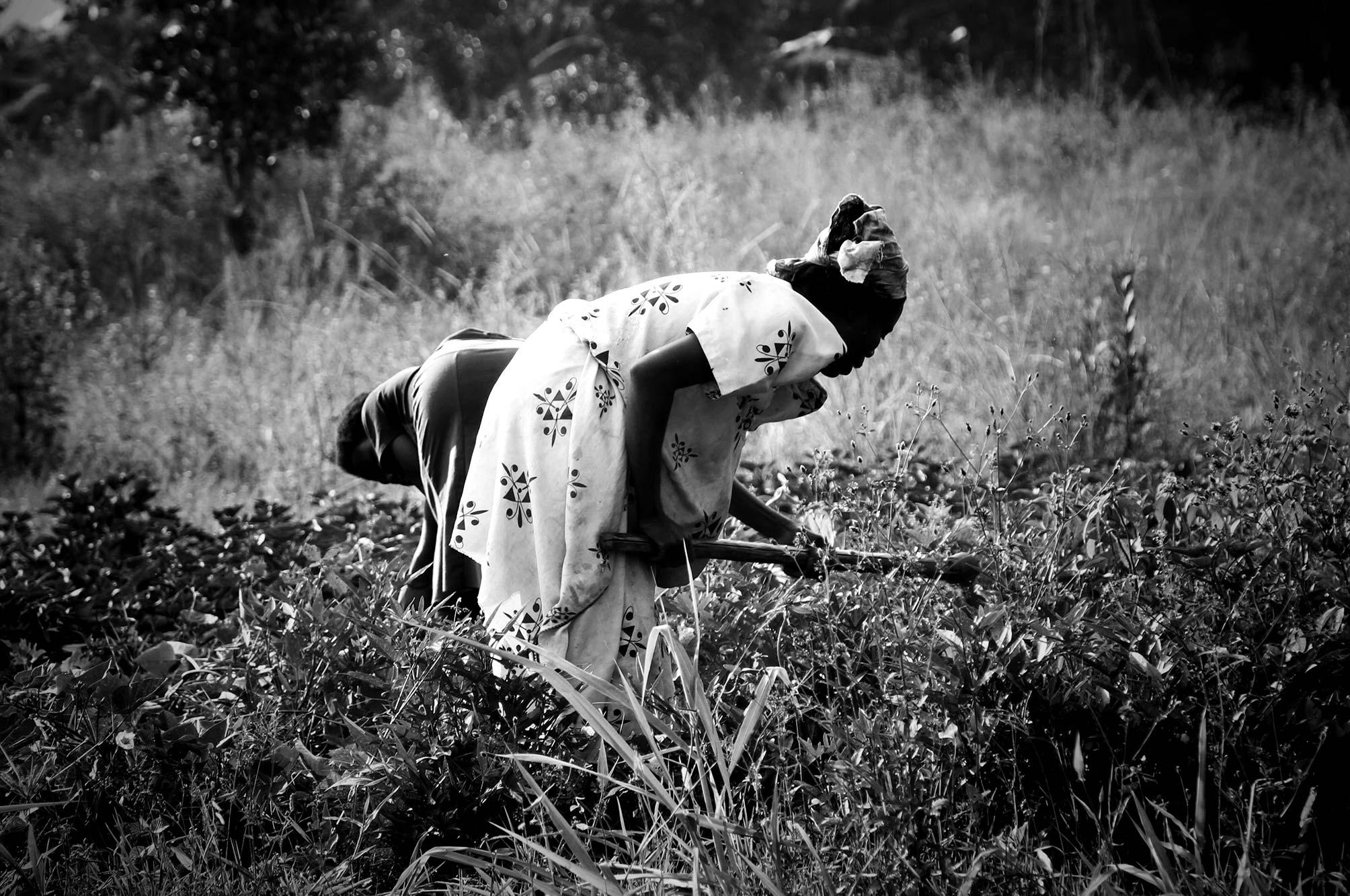 Uganda woman working the earth