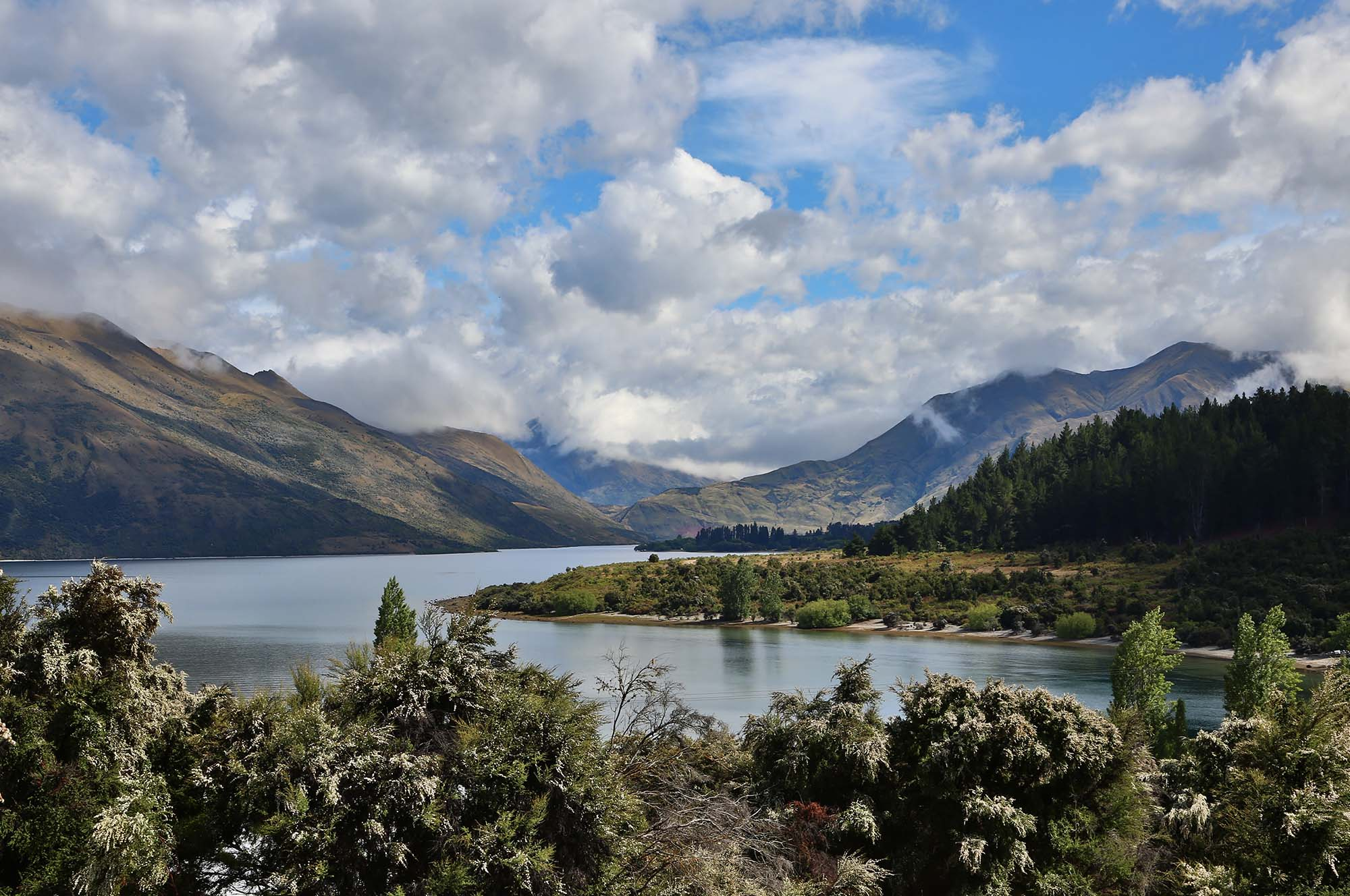 wanaka-and-queenstown-_0012_3Z6A9411