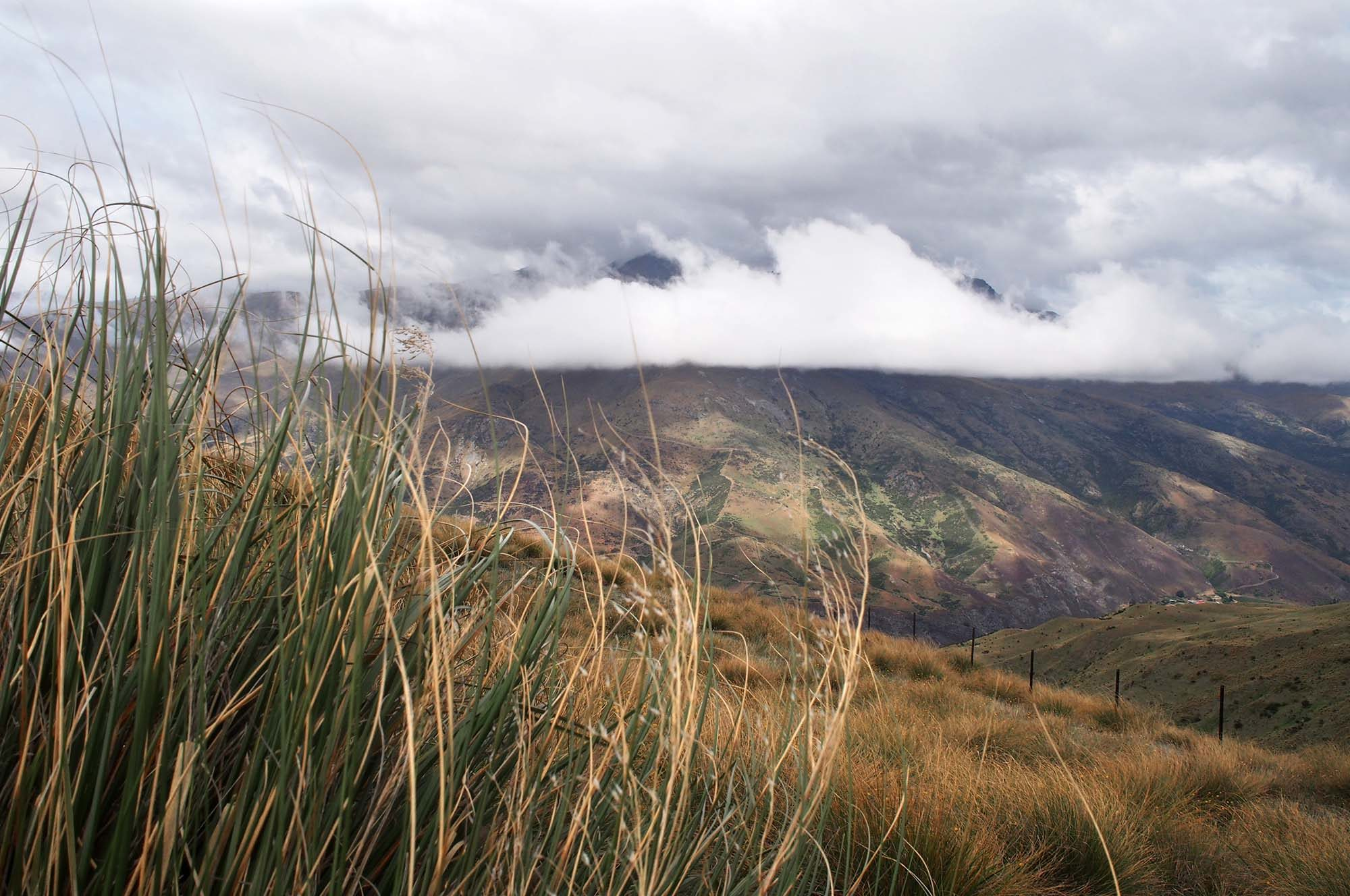 wanaka-and-queenstown-_0016_PC100902